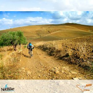 Escursione-Bicicletta-Mountain-Bike-Simeto